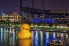 giant rubber duck pittsburgh night dave dicello pittsburgh pirates playoff Giant Rubber Duck and Pittsburgh Pirates Playoff Baseball