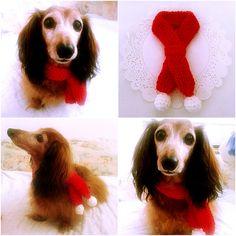 Etsy: $7.00 Christmas Crochet Dog Scarf, Dog Collar, Dog Bandana, Dog Cowl, Cat Scarf, Pet Accessory, Pet Clothing Apparel, Pet Scarf, Presents for Dogs