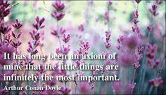 Wisdom Quotes by Arthur Conan Doyle