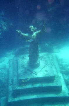 key largo, florida.  went snorkeling with a tour group...they putt putt you out to a coral reef and gear you up.  one of the sites was the location of a huge statue of christ....you paddle over it at the surface and see the fish swimming around it.  very, very cool.
