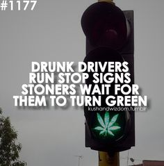 DONT DRINK AND DRIVE, SMOKE AND FLY...