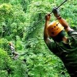 Jungle Flight Zip-lining through the rainforest