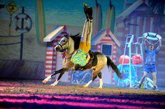 Die Apassionata- Europas erfolgreichste Show mit Pferden. Lest darüer auf der Donnerstag-Reitseite der Kieler Nachrichten oder auf www.kn-online.de/reiten  Foto: Apassionata