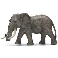 Reproducción animal elefante Fw African Elephant Male / Elefante Africano