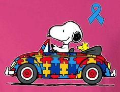 Snoopy and Woodstock Driving in a Volkswagen Beetle Convertible