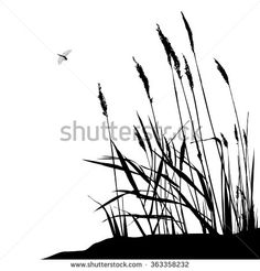 Reed and flying dragonfly during sunny day - vector illustration, black and white. Grass Silhouette, Animal Silhouette, Silhouette Images, Drawing Sunset, Landscape Pencil Drawings, Fairy Lanterns, Pyrography Patterns, White Plants, Dragonfly Art