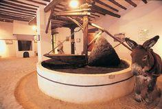 Museo de la Cultura del Aceite Linares-Baeza en Andalucía