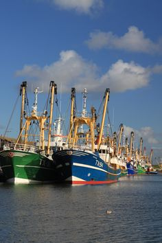 Texel - The Netherlands