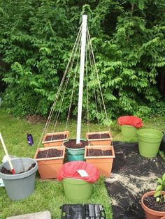 Best bean trellis ever!  The beans will grow in the four square containers and climb up the wires.  The green pot in the center is for marigolds and other flowers to attract pollinators!