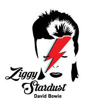 David Bowie / Ziggy Stardust Typography Decorative Vinyl Wall Sticker