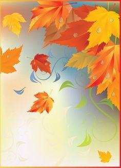 autumn maple leaves border vector