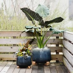 Hand-crafted especially for terrain, this rounded pot is made from glazed stoneware.- A terrain exclusive- Glazed stoneware- Indoor or outdoor use- Fr
