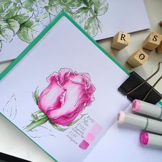 """In this Saturday, Dec. 17 pick another group at DRAWING ROSES from nature. Occupation - 3 hours (with a break of 15 minutes). 16: 00-19: 00, in a cafe near the m.Mendeleevskaya. Bring with you a rose, the most beautiful in your opinion, liner (01) and a smooth paper. And we will work on the creation of forms. There is a lot of training, this is the teaching session, and not """"a masterpiece in 3 hours."""" Cost of participation in the Intensive it - 2500₽. Enrol and pay can be turned to Ann..."""