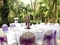 Rainforest Reception