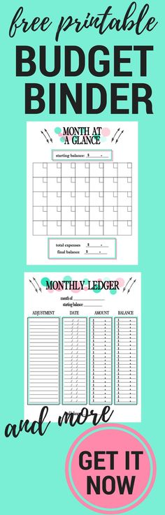 Free Printable 2017 Planner Inserts! - Printable budget planner - budget plan