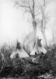 Native American (Santee Sioux) pose outside two tepees in a brushy area. - 1871