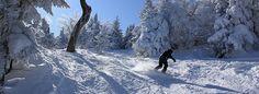 Mont Sutton - Gendronski