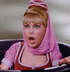 Season 1 Sidney Sheldon, Barbara Eden, I Dream Of Jeannie, 1960s Tv Shows, Old Tv Shows, Elvis Presley, Tina Louise, American Dad, Vintage Tv