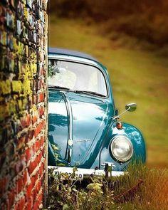 Cox la coccinelle sexy saturdays are the bestessst volkswagen vw vwbus kombi vwkombi combi vwcombi aircooled aircooledvw vwlove classicvw vwcamper volkswagonclassiccars Volkswagen New Beetle, Volkswagen Karmann Ghia, Beetle Car, Vw T1, Volkswagen Golf, Carros Retro, Van Vw, Kdf Wagen, Vw Vintage