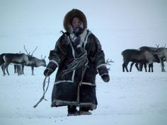 Yamal Peninsula Travel | Who are the Nenets?