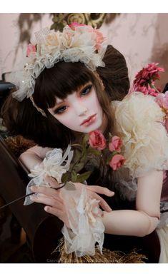 人形のすべて - Dollmore Japan