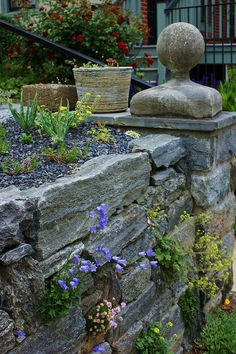 Stone wall with alpine planting