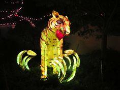 Magie des lanternes, Jardin botanique de Montréal, 2012 Art, Gardens, Chinese Lanterns, Taper Candles, Art Background, Kunst, Performing Arts