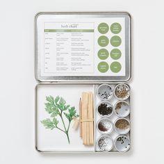Indoor Herb Garden Kits (a Great Gardener Gift!)