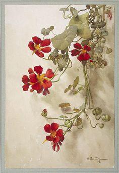 birdcagewalk: indigodreams:wasbella102: Nasturtiums: A. Renaudin