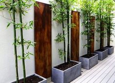 Indoor Concrete Bamboo Planter for Zen Garden Best Picture For Zen Garden design For Your Taste You are looking for something, and it is going to tell you exactly what you are looking for, and you did Modern Landscape Design, Modern Landscaping, Contemporary Landscape, Front Yard Landscaping, Landscaping Ideas, Minimalist Landscape, Contemporary Design, Modern Planting, Minimalist Garden