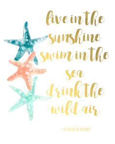 """Free printable travel art - """"Live in the sunshine, swim in the sea, drink the wild air"""" quote by Emerson. Perfect wall gallery design for a variety of styles. Option of feathers and starfish for a beach theme."""