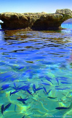 The transparent waters of the Blue Lagoon Beach in the Akamas Peninsula, north-west of Cyprus