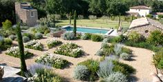Provençal residential garden Saint Cannat 13 Landscape Architect Thomas Gentilini - Design garden, landscape consultation - Marseille - Aix en Provence - Luberon - Région PACA - Saint-Tropez
