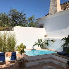 Small Backyard Pools, Small Pools, Pool Decks, Natural Swimming Pools, Natural Pools, Outside Pool, Small Pool Design, Mini Pool, Desert Homes