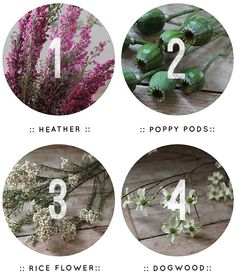 Design*Sponge | Spring Wreath How-To (by Pretty Streets Botanicals) #spring #wreath #howto #designsponge