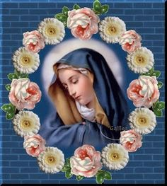 Solemnity of the Blessed Virgin Mary Blessed Mother Mary, Blessed Virgin Mary, Religious Pictures, Religious Art, Madonna, Hail Holy Queen, Images Of Mary, Mama Mary, Queen Of Heaven