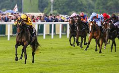 Lady Aurelia demolishes the field in the Queen Mary Stakes for Frankie Dettori and Wesley Ward. A truly jaw-dropping run from the daughter of Scat Daddy. Day 2 Royal Ascot 15.06.2016