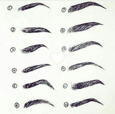 Eyebrow Sketches