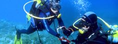 Our physically impaired scuba divers - Seable offers certified diving courses in its wheelchair accessible holiday packages.