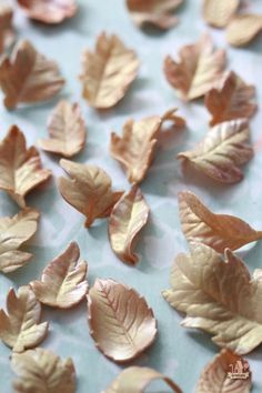 How to make Gum Paste Leaves | Sweetopia