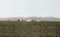 Bodega #Rutini #Wines (Tupungato, #Mendoza)