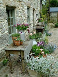 simple rustic garden beauty