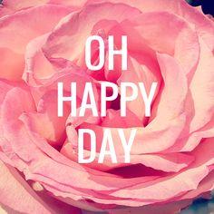 Blog - Saybird: Happiness, Inspiration, Rose