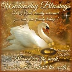 Happy Wednesday  sister ,hope you have a blessed,beautiful day,God bless you and yours xxx