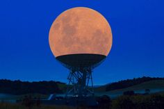 Funny pictures about Supermoon In Radio Telescope. Oh, and cool pics about Supermoon In Radio Telescope. Also, Supermoon In Radio Telescope photos. Photos Du, Funny Photos, Cool Pictures, Cool Photos, Awkward Pictures, Powerful Pictures, Random Pictures, Die 100, Perfectly Timed Photos