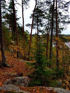Aulangonjärvi Kärmeskallio Country Roads, Nature, Naturaleza, Nature Illustration, Outdoors, Natural