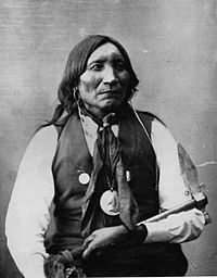 Lone Wolf the Elder (Gui-pah-gho) (ca.1820-1879) was a Principal Chief of the Kiowa tribe and was the last Principal Chief of the Kiowa Tribe. He should not be confused with Lone Wolf II (Mamadayte), a young Kiowa brave whom he adopted. Lone Wolf the Elder belonged to the Ka-it-senko Koitsenko, the highest-ranking society consisting of ten men picked for bravery and Tsetanma, elite warrior societies. None was more respected or influential than Chief Lone Wolf.