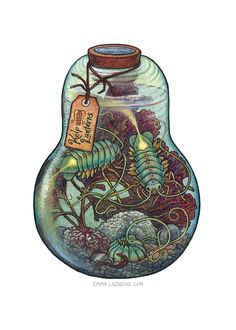 Bottled: Kelp Lanterns by emmalazauski.bottle shape as a tattoo reference Mythological Creatures, Fantasy Creatures, Mythical Creatures, Art Du Croquis, Inspiration Art, Fantasy Illustration, Cthulhu, Creature Design, Dungeons And Dragons