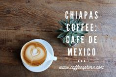 Chiapas Coffee: Cafe de Mexico - CoffeeSphere