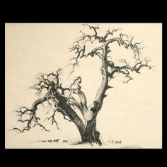 """EMIL JEAN KOSA Jr (American 1903-1968) """"Silhouette of a Tree"""" Charcoal on paper"""